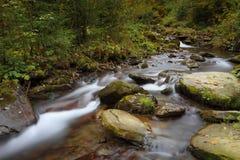 Corriente de la montaña en un bosque en la estación del otoño Foto de archivo libre de regalías