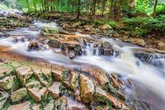 Corriente de la montaña por completo del agua potable Imágenes de archivo libres de regalías