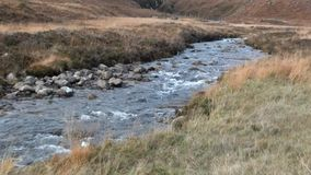 Corriente de la montaña que fluye en un valle herboso almacen de video