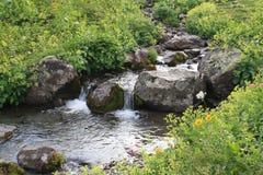Corriente de la montaña que fluye entre las piedras Imagen de archivo