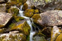 Corriente de la montaña que fluye entre las piedras cubiertas de musgo Foto de archivo