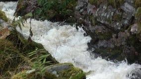 Corriente de la montaña que fluye rápidamente después de la precipitación en las montañas de Escocia almacen de metraje de vídeo