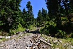 Corriente de la montaña que va abajo del valle Foto de archivo libre de regalías