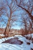 Corriente de la primavera en el día caliente Minnesota Fotos de archivo