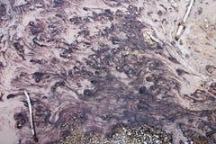 Corriente de las bacterias del parque nacional de Yellowstone fotos de archivo libres de regalías