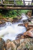 Corriente de precipitación de la montaña debajo del puente de madera Imagen de archivo