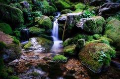 Corriente del agua Fotografía de archivo