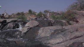 Corriente del agua en el salvaje metrajes