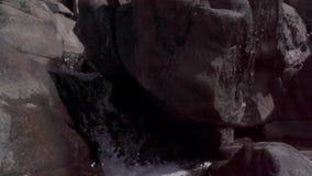 Corriente del agua en el salvaje almacen de metraje de vídeo