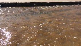 Corriente del agua fangosa, ondas hermosas, resplandor del sol en el agua almacen de metraje de vídeo