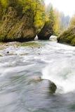 Corriente del bosque del otoño Imagen de archivo libre de regalías