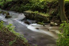 Corriente del bosque que corre sobre rocas cubiertas de musgo por la mañana Exp largo Foto de archivo