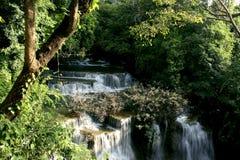 Corriente del latigazo de la cascada abajo Fotografía de archivo