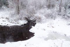 Corriente en bosque nevoso del invierno Fotos de archivo