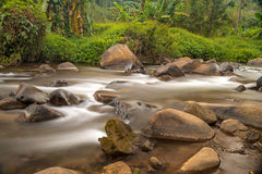 Corriente en el bosque tropical de Tailandia Fotografía de archivo
