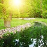 Corriente en el parque Imagen de archivo