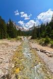 Corriente en el valle de Contrin Fotografía de archivo