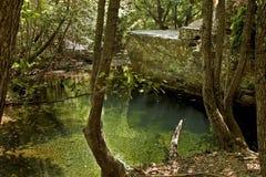 Corriente en Ida Mountain, Turquía Naturaleza hermosa Fotografía de archivo libre de regalías