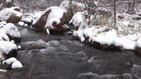Corriente en paisaje hivernal almacen de video