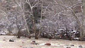 Corriente inundada en invierno almacen de metraje de vídeo