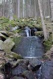 Corriente lateral de Vydra, umavade Å, República Checa Imagen de archivo