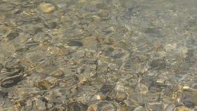 Corriente limpia rápida en el río en el agua poco profunda, a través de la cual pueden estar las piedras planas grandes y pequeña almacen de metraje de vídeo