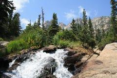 Corriente a lo largo del rastro Rocky Mountain National Park 4 Imagen de archivo