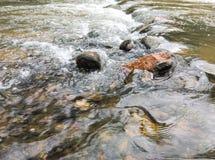 Corriente natural del agua Imagenes de archivo