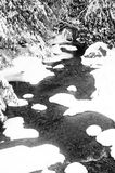 Corriente Nevado Fotografía de archivo libre de regalías