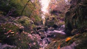 Corriente otoñal en País de Gales del norte, Reino Unido almacen de video