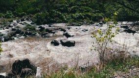 Corriente pintoresca de la montaña en un paisaje de la montaña del balanceo con agua de precipitación que bate contra las rocas almacen de metraje de vídeo