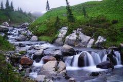 Corriente que fluye en un parque nacional más lluvioso del Mt Foto de archivo