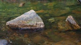 Corriente que fluye entre las rocas con el sonido auténtico almacen de video