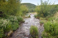 Corriente que fluye suave con las plantas verdes vibrantes Fotografía de archivo libre de regalías
