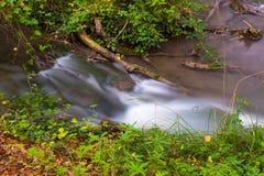Corriente rápida del agua en bosque Fotos de archivo libres de regalías