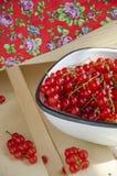 Corriente roja Imagen de archivo libre de regalías
