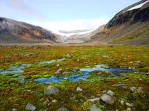 Corriente trenzada en un valle del glaciar foto de archivo libre de regalías