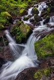 Corriente y cascada de la montaña Imagen de archivo