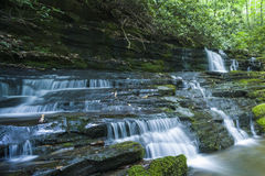 Corriente y cascadas, Greenbrier, Great Smoky Mountains NP Imagen de archivo libre de regalías