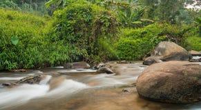 Corriente y piedras grandes en el bosque Foto de archivo libre de regalías