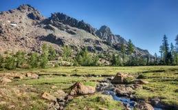 Corriente y prado alpinos en montañas de la cascada Imagen de archivo libre de regalías