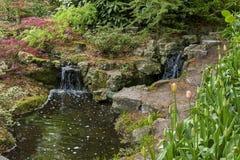 Corrientes con las cascadas en las flores del parque Imágenes de archivo libres de regalías