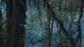 Corrientes de la primavera de un pequeño río de la estepa metrajes