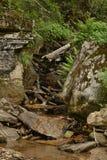Corrientes del agua de las colinas Fotos de archivo