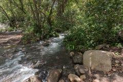 Corrientes del valle de Iao, Maui del oeste Imagen de archivo libre de regalías