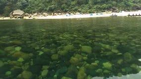 Corrientes limpias hermosas naturales del lago almacen de video