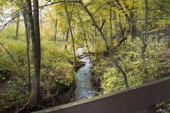 Corrientes que enrollan a través de bosques coloreados caída Foto de archivo