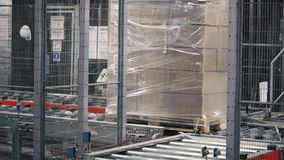 Corriere imballato sulla linea di produzione contro le scatole di cartone in magazzino clip Scatole di cartone sul nastro traspor stock footage