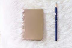 Corrija com o caderno no tapete branco Imagens de Stock