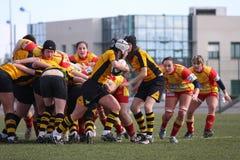 Corrispondenza USAT (Francia) v GETXO (Spai di rugby immagini stock libere da diritti